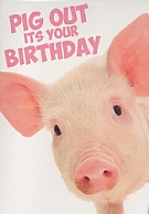 Pig Out Its Your Birthday